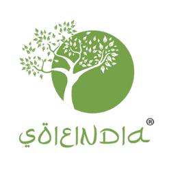 www.soieindia.com